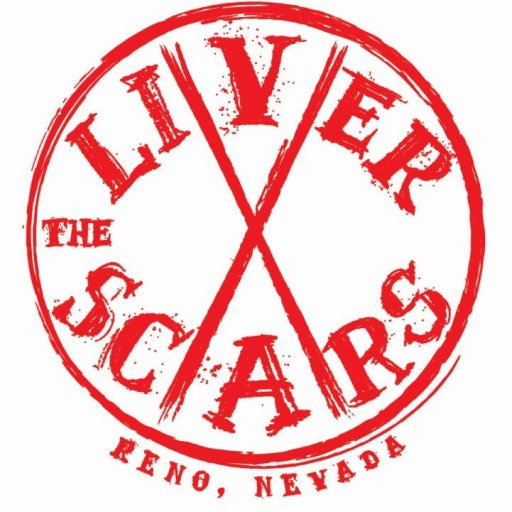 The Liver Scars