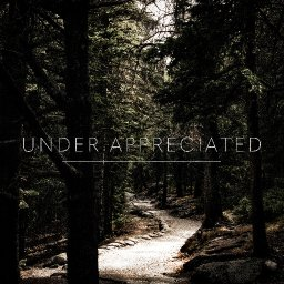 """Under Appreciated"" feat. ""Summer"""