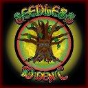 Seedless 10 Den C